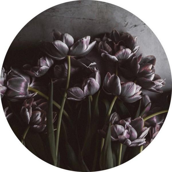 Kunstdruck _Dark Tulips_ Ø 110 cm