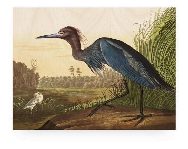 Print auf Holz _Blue Crane_ 100_75 cm